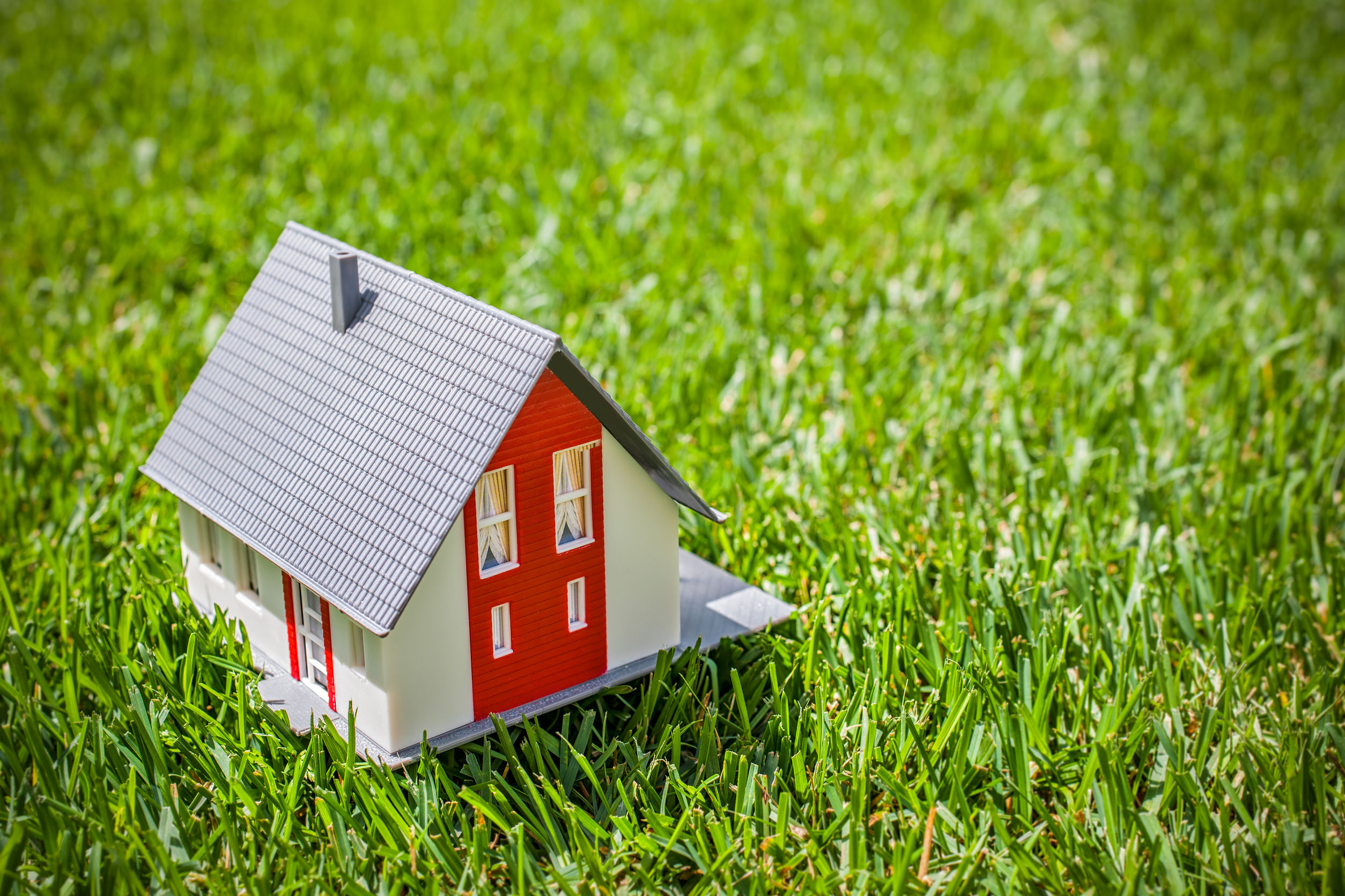 29766698 - house in green grass. real estate concept