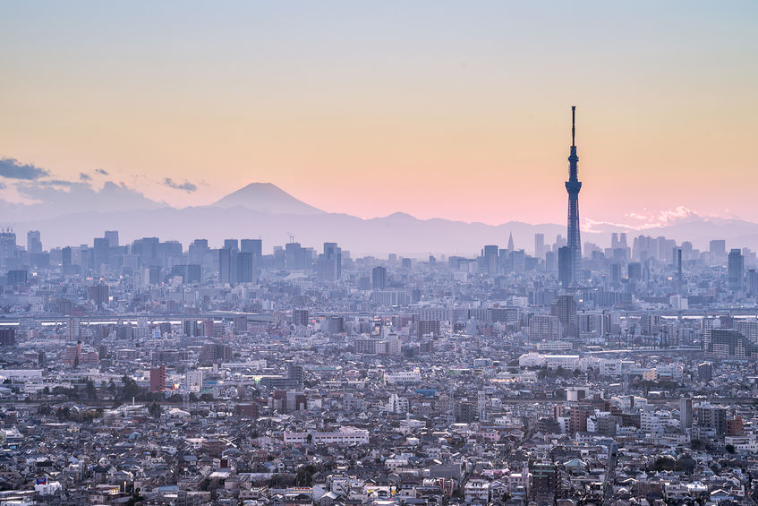 47111293 - tokyo skytree and mt fuji on the background