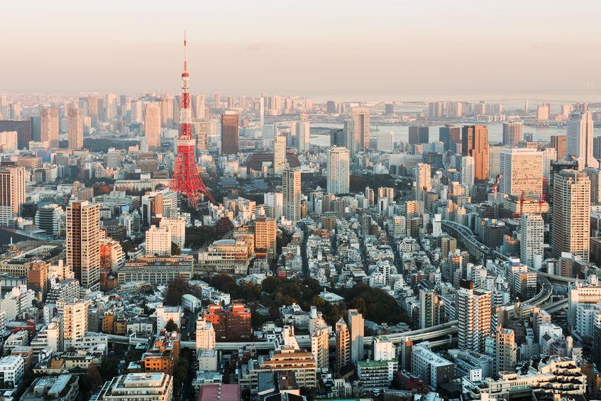 54493849 - tokyo skyline at sunset.