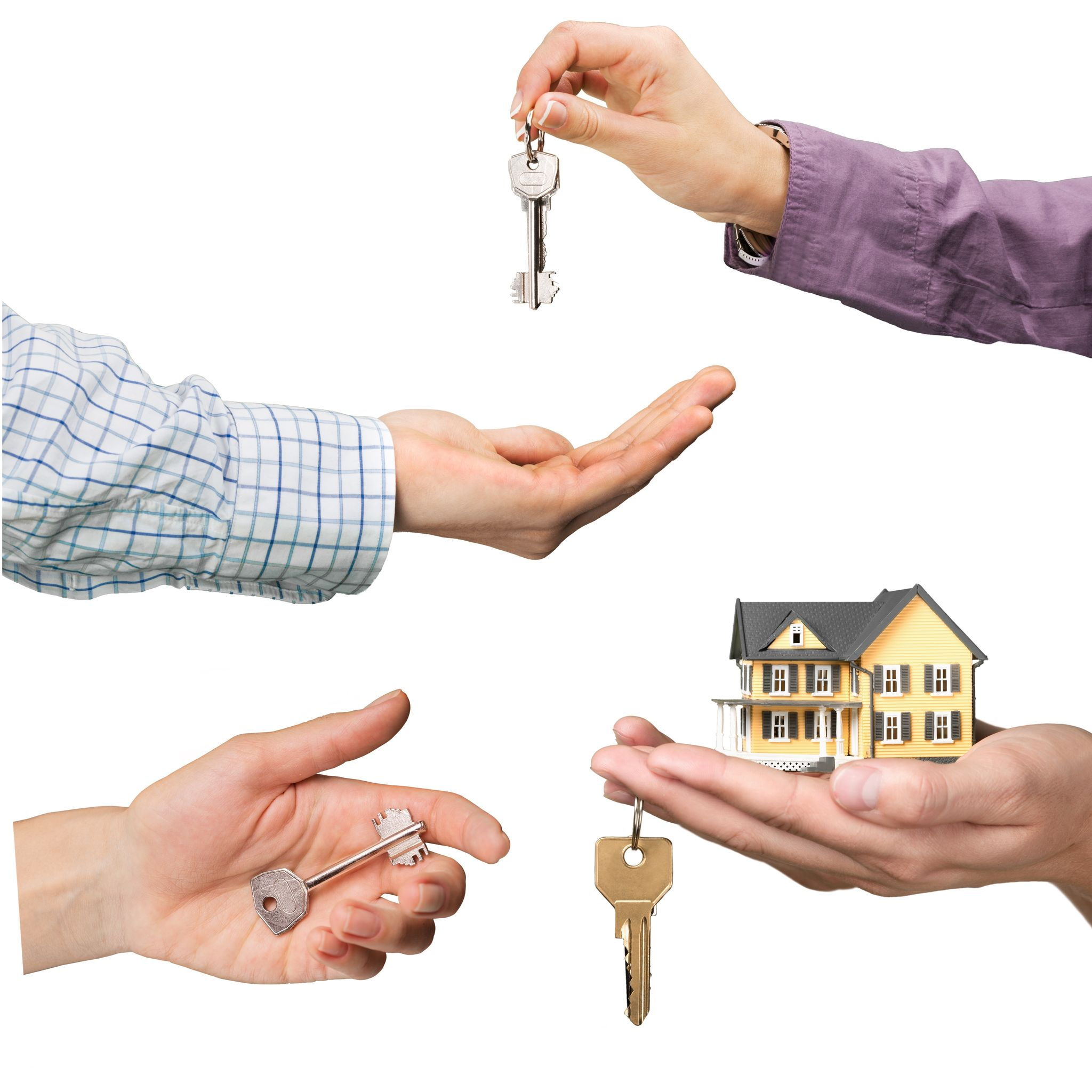 42322699 - real estate, real estate agent, house.